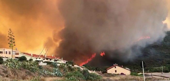 L'urlo del pastore: Sardegna distrutta dal fuoco e da chi il fuoco non l'ha saputo prevenire