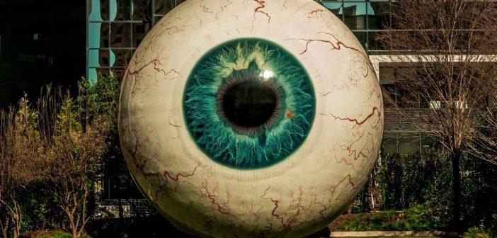 Web: l'utopia del libero arbitrio nell'era della bubble democracy e del tribalismo identitario